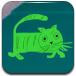 绿猫逃离密室