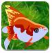 花角鱼逃脱