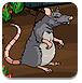 帮助小老鼠逃脱