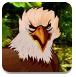 森林猎鹰救援