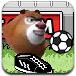 熊出没VS奥特曼足球