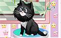 猫咪美容院