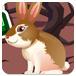 小兔子逃脱2