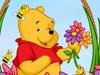 维尼采鲜花
