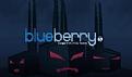 蓝莓蓝莓我爱你