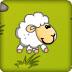 小綿羊過關