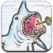 鯊口取鑰匙