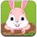 赶走偷吃的小兔子