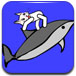 小猫与海豚