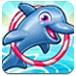 训练小海豚3