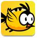 小黃鳥亂飛