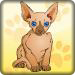 可爱小猫咪记忆翻牌